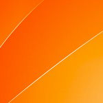 2015年 アセリノ・フレイタスが佐々木基樹とスパーリング