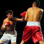 【スポーツ】ボクシング 日本人世界王者の引退後